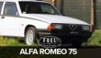 Alfa Romeo 75 del 1986, l'ultima vera Alfa Romeo