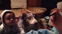 Chiede al figlio di dire la parola mamma, ma risponde il cane: non riuscirete a credere alle vostre orecchie