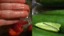 Fragole e cetrioli contaminati: la scoperta è sconvolgente