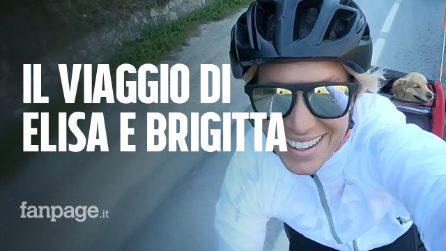 """Elisa Vottero gira l'Italia in bici col suo cane: """"Da Nord a Sud, 2200km con la mia amica Brigitta"""""""