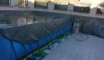 Napoli, l'acqua della piscina ondeggia dopo la scossa di terremoto