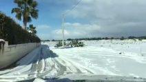 Salento imbiancato: il video di Giuliano Sangiorgi della neve