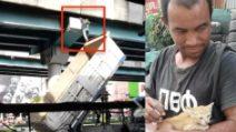 Camionista eroe: il gesto estremo per salvare un gattino intrappolato