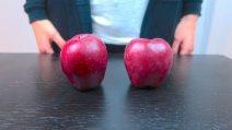 La maestra spiega il bullismo con due mele: l'emozionante lezione