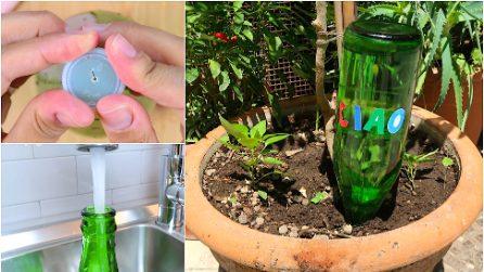 Bottiglia d'acqua rovesciata nella pianta: il trucco utile quando sei in vacanza