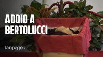 """Ultimo saluto a Bernardo Bertolucci: """"Il più grande regista della sua generazione"""""""