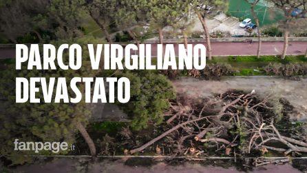 Napoli, alberi abbattuti dal vento al Parco Virgiliano: ecco il paesaggio senza i pini secolari