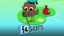 F4 Shorts - L'Anatroccolo Migratore