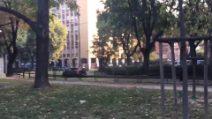 Milano, auto sui binari del tram per superare la coda: l'automobilista rischia di restare bloccato