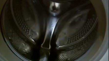 Come eliminare la muffa dalla guarnizione della lavatrice