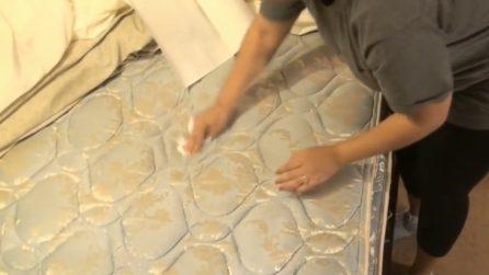 Pulire Le Pareti Di Casa.Ammoniaca Muffa Muri