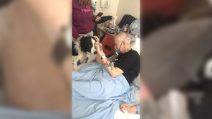 L'ultimo desiderio prima di morire: abbracciare per l'ultima volta il suo amato cane