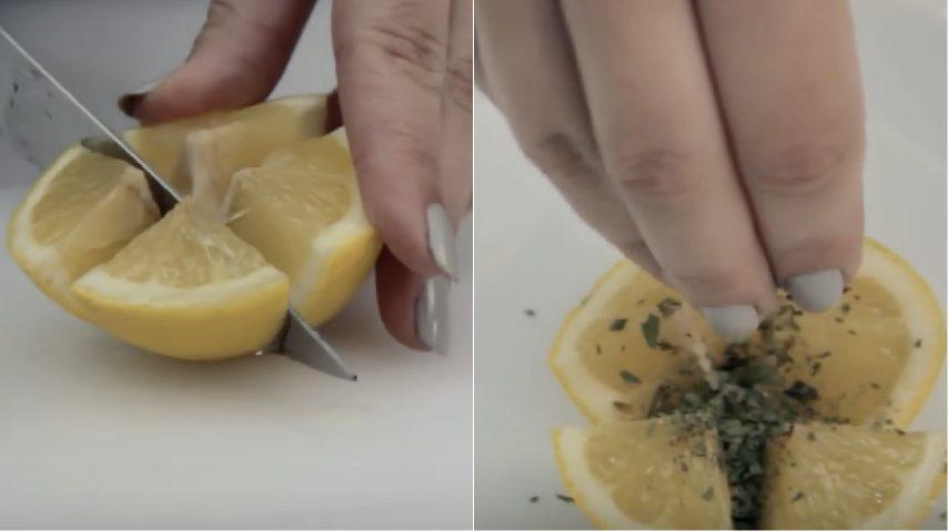 Come Eliminare Le Formiche Dalla Cucina Cool Come Eliminare Le