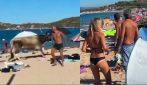 Paura in Sardegna, bagnanti in fuga: l'incursione inaspettata in spiaggia
