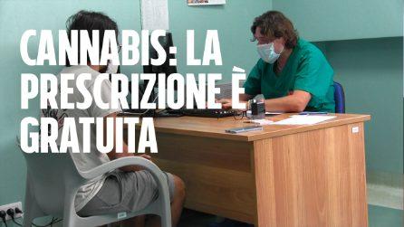 """Bari, nell'ambulatorio pro cannabis: """"Si prescrivono gratis i farmaci per l'uso analgesico"""""""