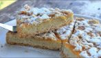 Crumble apricot pie: easy, fast and mouthwatering dessert