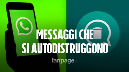 Su WhatsApp arrivano foto, video e audio che si autodistruggono: tutte le novità