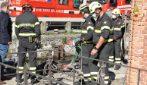"""Milano, sei cinghiali """"a passeggio"""" lungo la Darsena: i vigili del fuoco ne catturano due"""