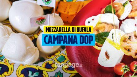 """""""Sua maestà"""" Mozzarella di Bufala Campana DOP: L'oro bianco che il mondo ci invidia"""
