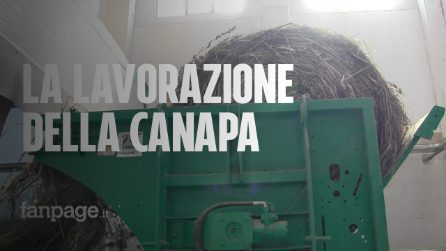 Il centro di trasformazione della canapa per dar vita alle varie filiere