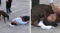 L'uomo finge di sentirsi male, il cane non sa che si tratta di un attore e si avvicina per confortarlo