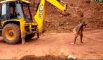 A torso nudo si fa grattare da un escavatore: una scena da non provare a ripetere
