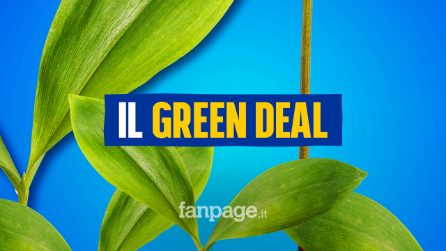 Europeese papale papale: verso il Green Deal