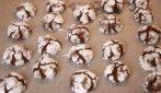 Biscotti al cacao: la ricetta semplice e gustosa da provare assolutamente