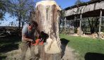 Inizia a incidere il tronco con una motosega: crea un capolavoro assoluto