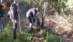 Droga nascosta sotto terra, la Polizia scava nei giardini del Rione Traiano