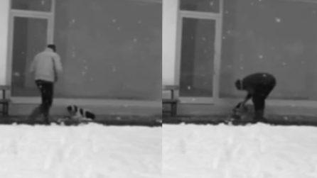 Un cane sta congelando durante la tempesta di neve: un uomo si priva della sua giacca per riscaldarlo