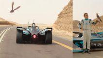 Felipe Massa su Formula E sfida un falco: la sfida in velocità è avvincente