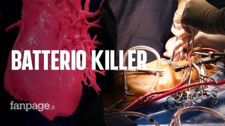 """Batterio killer fa 6 morti in Veneto, l'allarme: """"Casi in altre Regioni, ecco i sintomi e cosa fare"""""""