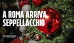 A Roma arriva 'Seppellacchio', l'albero di Natale contro il disboscamento