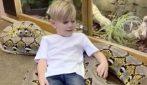 Il bambino si stende sul gigantesco serpente: una scena da lasciare a bocca aperta