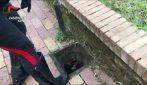 Napoli, furto all'interno di un parco giochi: malviventi portano via 26 tombini di ghisa