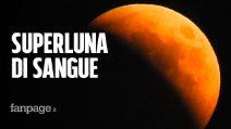 Cos'è l'eclissi totale della Superluna di sangue e cosa rischiamo