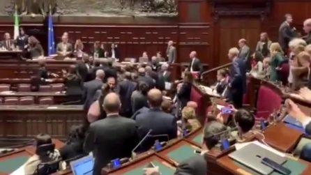 """La denuncia del M5s: """"Marattin (Pd) alza le mani su un nostro deputato"""""""