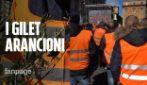 """Gilet arancioni degli olivicoltori: """"Perse un milione di giornate di lavoro, ora decreto calamità"""""""