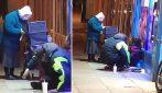 Anziana distribuisce un pasto caldo ai senzatetto a temperature gelide: la scena è stupenda