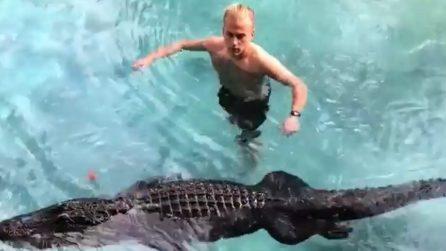 In acqua con l'alligatore dormiente: ma il rettile potrebbe svegliarsi da un momento all'altro