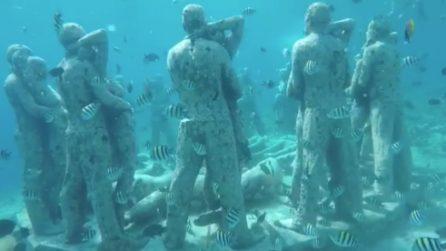 Un'immersione piena di sorprese: i sub si ritrovano davanti a meravigliose sculture