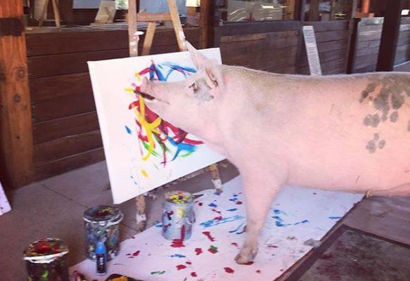 Un maialino con un dono speciale prende il pennello ed è magia