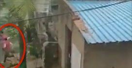 Papà, mamma e figlio scappano via in tempo dalla loro casa: le immagini choc