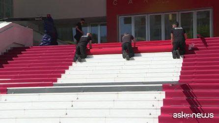 """""""I morti non muoiono"""", il film di Jim Jarmush apre la 72esima edizione del Festival di Cannes"""