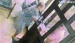 Anziana 78enne apre alla porta, ma c'è una brutta sorpresa: le immagini choc