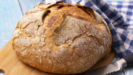 Pane in pentola: ecco il segreto per ottenerlo più morbido e saporito!