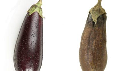 Come conservare le melanzane e mantenerle fresche a lungo