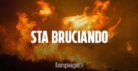 """Amazzonia, il dramma degli incendi continua. Macron: """"La nostra casa brucia"""""""