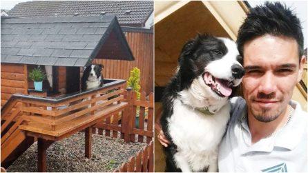 Costruisce per il suo cane una vera casa in miniatura in giardino: resterete incantati